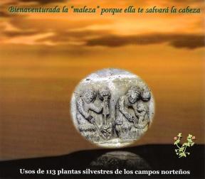 plantas-silvestres-comestibles-001-correo